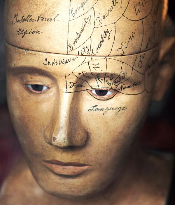 El Intelecto y la Experiencia