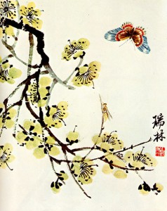 butterfly-and-flowering-plum-1935