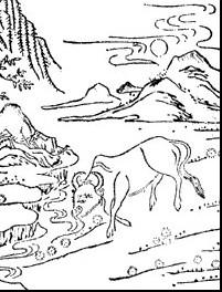 La Vaca y La Isla