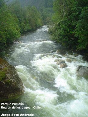 Nuestras vidas son los ríos